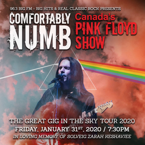 Poster of Comfortably Numbs upcoming concert
